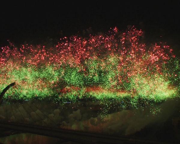 2011台北新年焰火